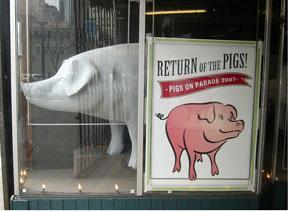 Return of the Pigs
